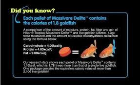 hikari massivore sinking pellets hikari massivore delite large carnivore fish food 13 4 oz