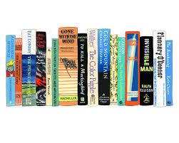 ideal bookshelf 771 southern lit
