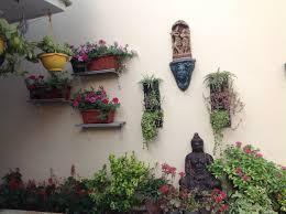 19 best greendecor images on pinterest balcony garden plants