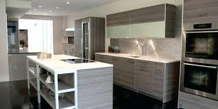 Poggenpohl Kitchen Cabinets Kitchen Cabinets Georgetown Onyx Kitchen Cabinets Georgetown