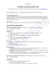 Banking Resume Sample Entry Level Banking Resume Objective Examples Virtren Com For Retail Bank