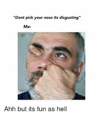 Its Friday Meme Disgusting - dont pick your nose its disgusting me ahh but its fun as hell meme