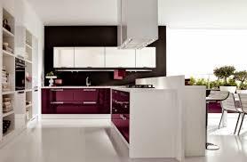 maroon kitchen decoration beautiful maroon kitchen designs