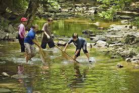 Ohio Nature Activities images River explorer program school programs education ohio river JPG