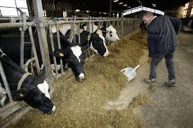 chambre d agriculture isere paladru une fausse bonne ée agricole