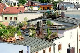 best rooftop garden ideas love backyard