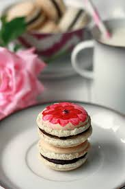 vanilla bean french macarons macaron recipe macarons and how to