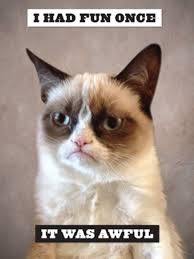 Image 9 Best Grumpy Cat - lil bub and grumpy cat claw their way into bookstores