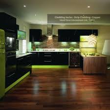 lime green kitchen ideas 174 best kitchen ideas for remodel images on modern
