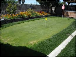 backyards fascinating tour quality synthetic golf greens 36
