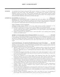 Hris Analyst Resume Sample by Sample Resume Of Fund Manager Resume Sea Logo Websites Large