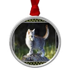outdoor cat ornaments keepsake ornaments zazzle