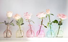 Flowers Glass Vase Nature Flowers Vase Glass Colors Still Life Petals Wallpaper