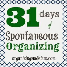 31 days of spontaneous organizing day 14 purse or diaper bag