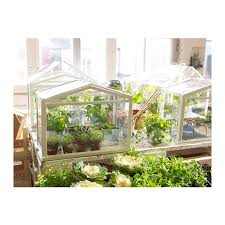 ikea helps you grow the goods with new micro greenhouse architizer
