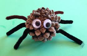 pine cone spider pinaddicts challenge