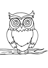 owl 60 animals u2013 printable coloring pages