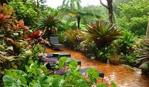 simple home gardens u2013 exhort me