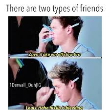 Memes 1d - one direction meme one direction pinterest meme niall horan