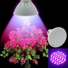 popular indoor planting lights buy cheap indoor planting lights