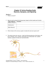 chapter 37 active reading guide