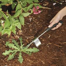 gardening picture amazon com oxo good grips gardening weeder hand weeders