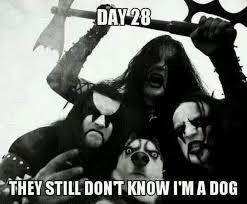 Black Metal Meme - 10 best heavy metal memes heavy metal and memes
