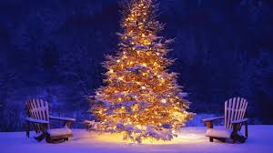 lighted christmas tree lighted christmas tree and this christmas tree with snow and