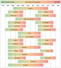 Fall Garden Plants Texas - best 25 gardening calendar ideas on pinterest when to plant