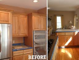 painted cabinets kitchen paint or stain kitchen cabinets spurinteractive com