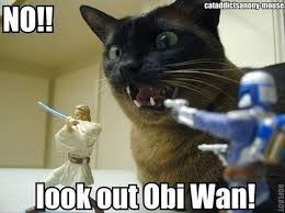 Star Wars Cat Meme - cat playing star wars dump a day