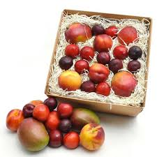 organic fruit basket delivery best fruit gift baskets gorgeous organic for every