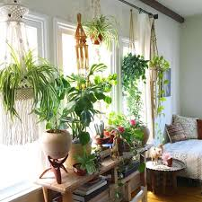 room with plants decorate your living room with plants here are 20 ideas to inspire