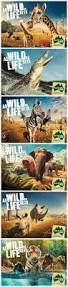 37 best marketing a to zoo images on pinterest zoos advertising