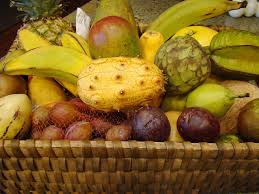 general fruit care articles gardening know how