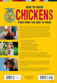 How To Care For Chickens In Your Backyard by How To Raise Chickens Everything You Need To Know Updated