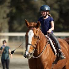 orange county u0027s premier destination for guided trail rides and