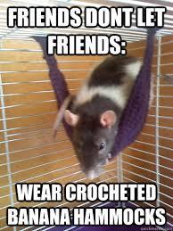 Banana Hammock Meme - friends dont let friends wear crocheted banana hammocks hammock