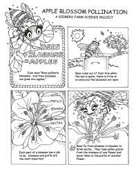 pollinator coloring sheet attraction pinterest teaching