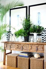 plantes cuisine 30 génial amenagement cuisine avec le plantes vertes
