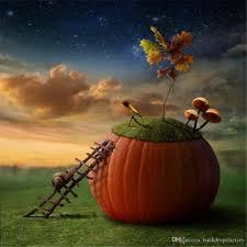 vinyl art fabric halloween backdrops for photography night sky