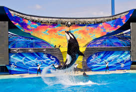 Sea World San Diego Map by Things To Do In San Diego 36 Attractions Visit A City