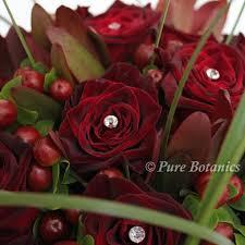 theme black rose black baccara roses for a deep burgundy red colour theme pure botanics