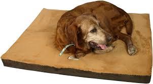 Cedar Dog Bed Armarkat Memory Foam Orthopedic Pet Bed Mocha Brown Large