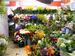 top flowers near me with flower shop near me flower shop near me