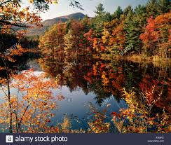 New Hampshire forest images Red eagle pond in white mountain national forest new hampshire jpg