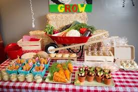 Kids Party Food Ideas Buffet by Best Kids U0027 Parties The Farm U2014 My Party Farming Barnyard Party
