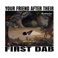 Dab Meme - first dab meme sleeping beauty weed memes
