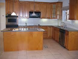Basic Kitchen Cabinets by Kitchen Amazing L Shaped Kitchen Layout With Island Perfecting