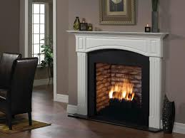Propane Fireplace Heaters by Shop Fireplaces U0026 Stoves At Homedepot Ca The Home Depot Canada